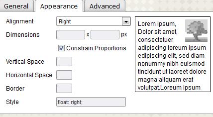 Insert - Edit Image - Appearance Tab