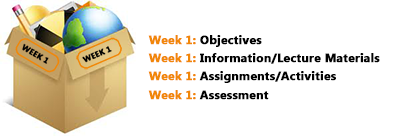 Course Organization Example - By Week